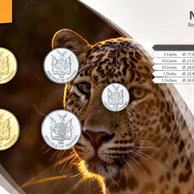 Set de Monedas de Namibia