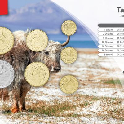 Set de Monedas de Tajikistan
