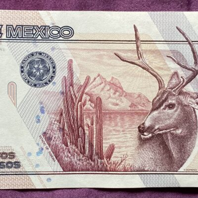 Mexico.100NuevosPesos.1992